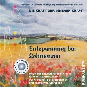 cover_schmerz_xl