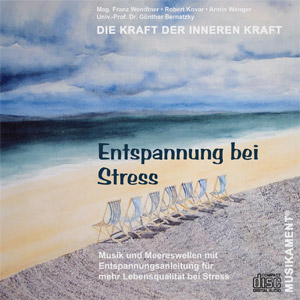 cover_stress_xl